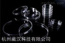 新疆细胞培养皿150x15mm 标准细胞培养皿(进口带盖)