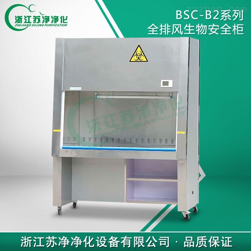 二级生物安全柜BSC-1300IIB2 全排风生物安全柜