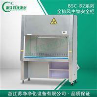 BSC-1300IIB2型100%外排二级生物安全柜