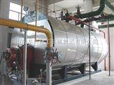 龍興 燃氣蒸汽鍋爐