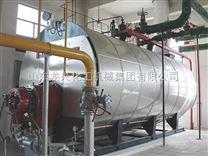 龙兴——燃油蒸汽锅炉
