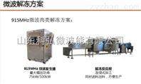 带包装冷冻果品微波解冻机生产线