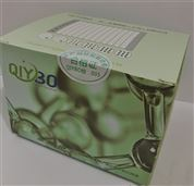 幽门螺杆菌抗体(HP-Ab)检测卡