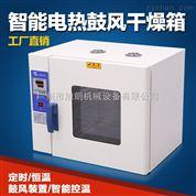 電熱式鼓風智能工業烘箱