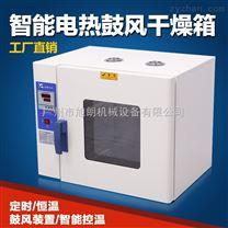 廣州中藥材專用智能數顯恒溫烘箱
