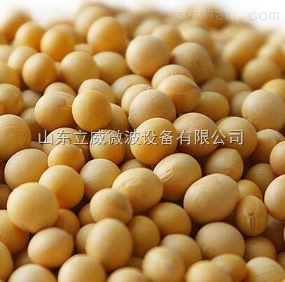 济南黄豆微波烘焙机生产厂家地址电话