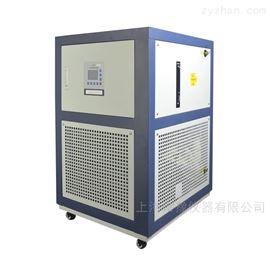 5/10/50/100L低溫冷卻液循環泵