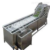 DRT連續式水浴浸泡清洗橙子機器設備