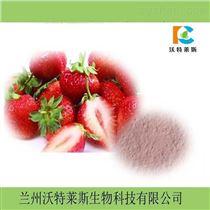 提取物鲜草莓粉10:1    1公斤包邮
