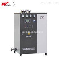 立式电加热蒸汽发生器