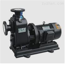 ZXL型直联式自吸离心泵-安徽信成泵阀