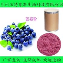水溶性果粉 藍莓粉99  藍莓速溶粉