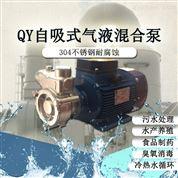 水冷系统自吸泵气液混合溶气泵臭氧发生泵