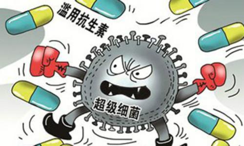"""科学家发现抗生素可""""撕杀""""超级细菌"""