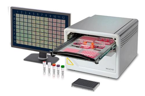 赛多利斯推出新型Incucyte®SX5 活细胞分析系统,为活细胞分析实验提供了新的可能性