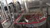 无菌血清灌装机